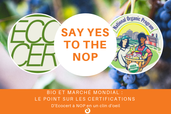say yes to the nop
