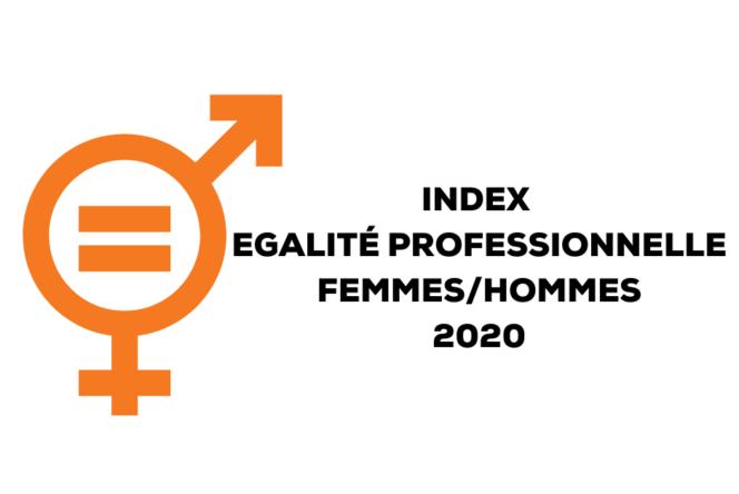 INDEX EGALIté professionnelle femmeshommes 2020